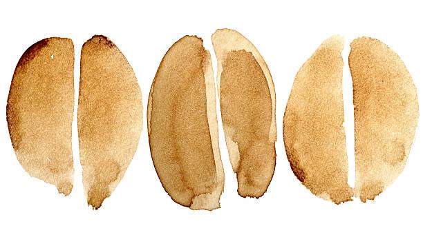 Set of coffee beans stock photo