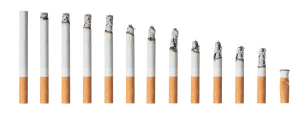 set of different cigarettes isolated on white - sigaretta foto e immagini stock