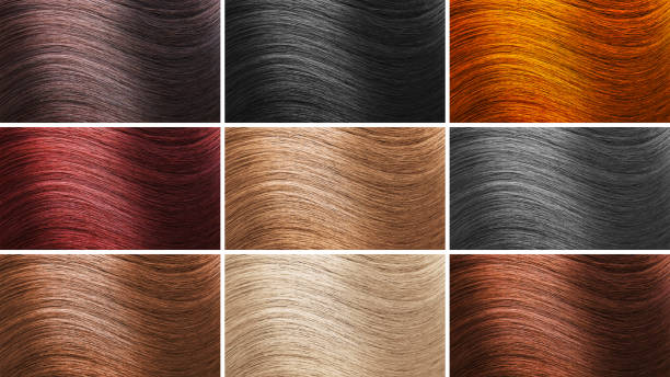 Set of different hair colors stock photo