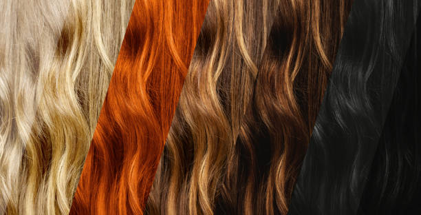 Set of different natural hair color samples. stock photo