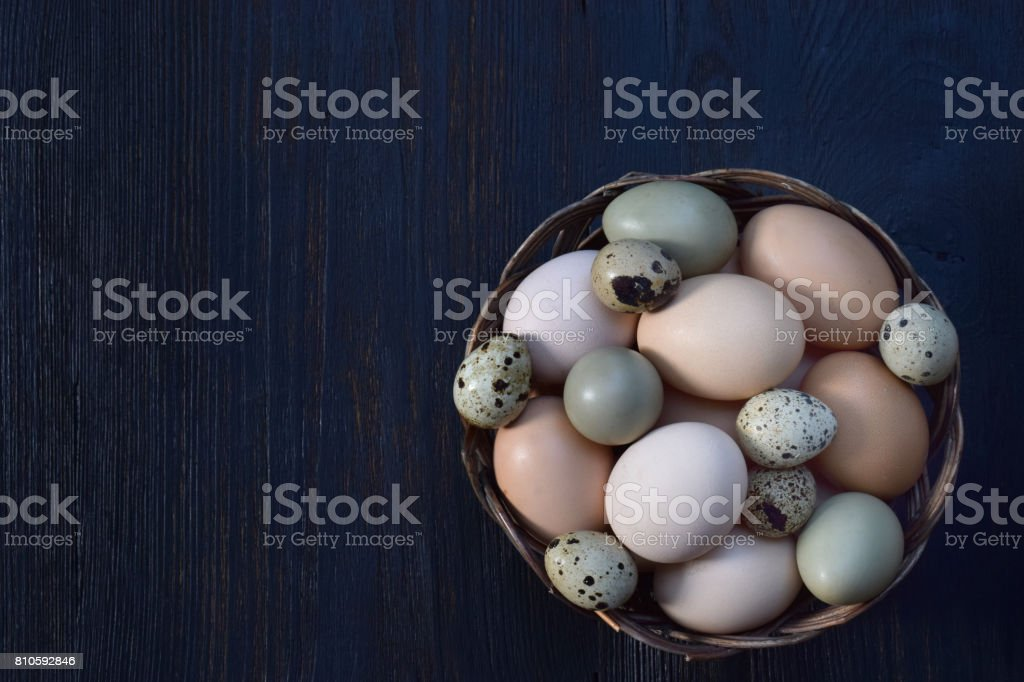 Set of different types birds eggs from chicken, pheasant and quail on a dark background. stock photo