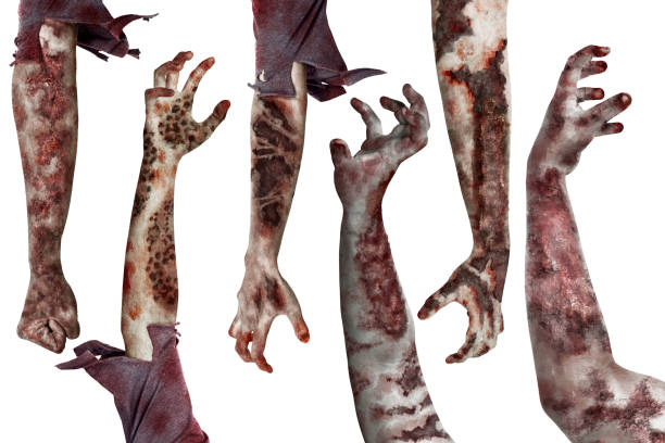 Set of dirty zombies hand with different posing picture id1039364872?b=1&k=6&m=1039364872&s=612x612&w=0&h=tetcjzbspa1xxfblqu1yfutgedl1qesvifypejjah2i=
