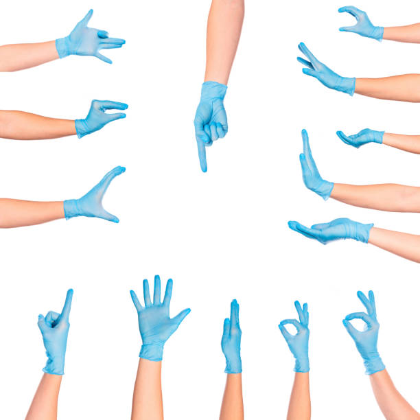 set of   female doctor`s hands in blue glove  isolated on white background set of  female doctor`s hands in blue glove  isolated on white background latex stock pictures, royalty-free photos & images