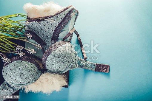 fd3d8dcec Foto de Conjunto De Roupa Interior Feminina Na Caixa De Presente Com Flores  Da Primavera Um Presente Para O Dia Das Mulheres e mais fotos de stock de  Adulto ...