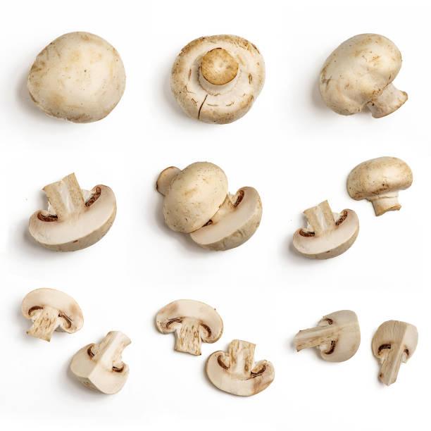 beyaz arka plan üzerinde izole taze bütün ve dilimlenmiş champignon mantar kümesi. üstten görünüm - yabani mantar stok fotoğraflar ve resimler