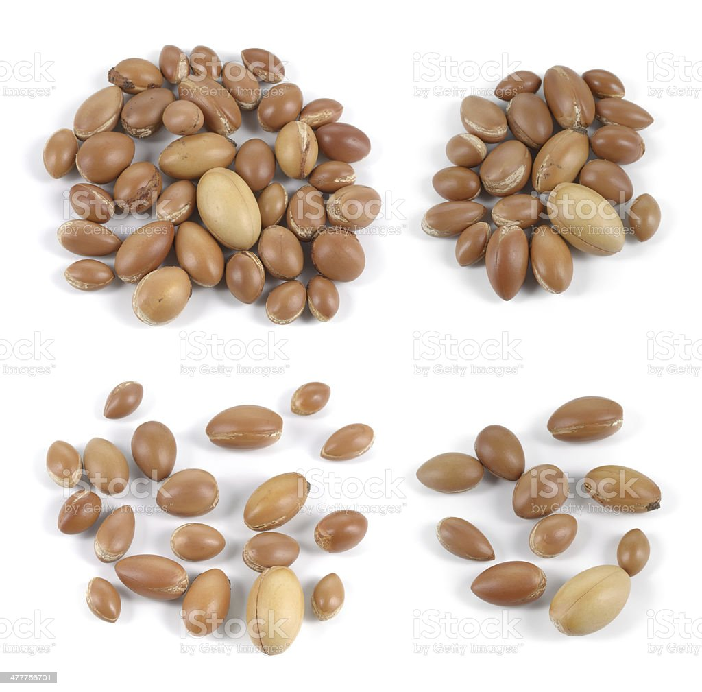 Set of groups of argan nuts on white background. stock photo