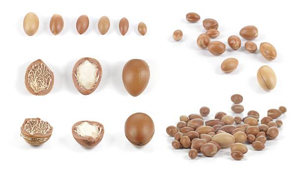 Set of groups of argan nuts on white background. stok fotoğrafı