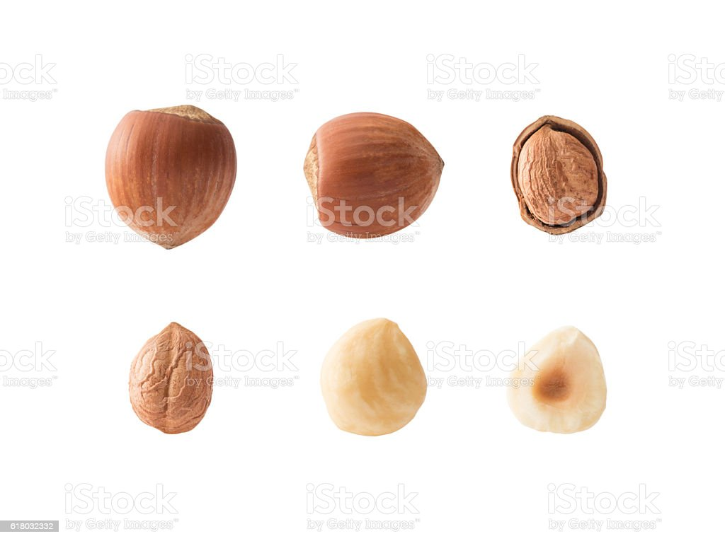 Set of hazelnuts stock photo