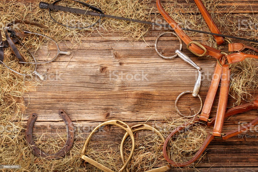 Set of horse equipment stock photo