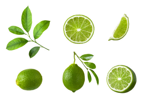 Set of lime fruit, green lime slices and leaf isolated on white background. stock photo