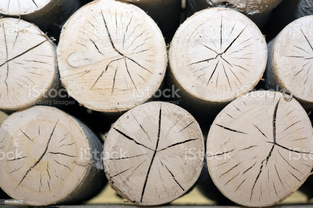 Set Of Logs Folded In A Decorative Fireplace Stock Photo