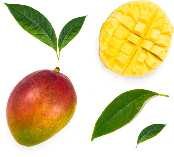 Set of mango fruits, mango cuted and leaf. Clipping path for each item. stock photo
