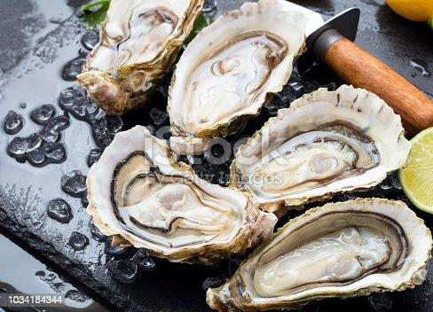 set of fresh opened oysters with ice, lemon and knife on black slate background