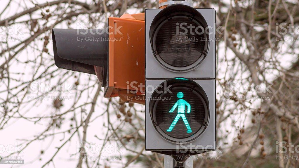 Set of pedestrian traffic lights stock photo