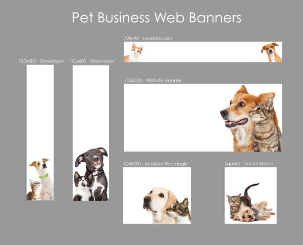 Set of pet business web banner templates picture id1085115850?b=1&k=6&m=1085115850&s=612x612&w=0&h=vby1qznqh7zgpewb7eemjlu4 pj mpgoczpwqiz 3fi=
