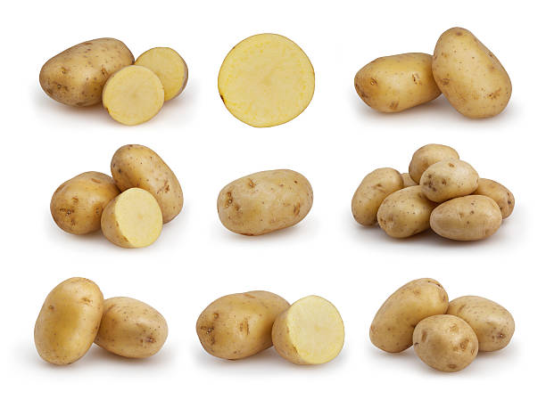 Set of potatoes isolated on white background with clipping path stock photo