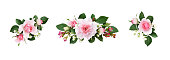 istock Set of small floral arrangements with pink rose flowers and green leaves 1262889620
