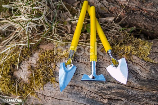 Set of small wood and steel garden implements arranged in a neat row on a background of rich brown earth ready for transplanting seedlings in the spring with a rake trowel
