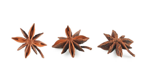 Set of star anise or badian isolated Set of dried star anise (illicium verum) with seeds inside closeup isolated on white background, top and side view. Spice for cooking and medicinal herb. star anise on white stock pictures, royalty-free photos & images
