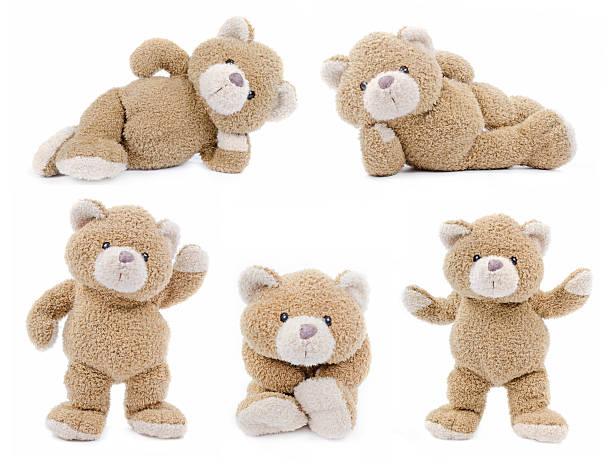 set of teddybears - teddy bear stock photos and pictures