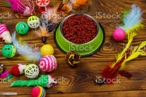 Set of toys for cat and bowl with dry pet food on wooden background picture id1249603040?b=1&k=6&m=1249603040&s=612x612&h=xdxk8cme6qcq zszyr rufp rihb5swejalb74ugfzc=
