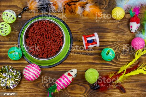 Set of toys for cat and bowl with dry pet food on wooden background picture id1249603041?b=1&k=6&m=1249603041&s=612x612&h=ugnakvmjk4vnvyypsub6baudgivvsxlpemkaivpowig=