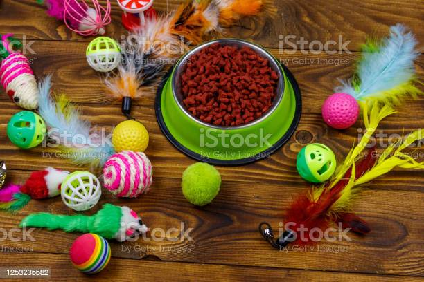Set of toys for cat and bowl with dry pet food on wooden background picture id1253235582?b=1&k=6&m=1253235582&s=612x612&h=9 kobz1ild3vzmpsc6ulhz0ecspklpu1jpsf8jffo9m=
