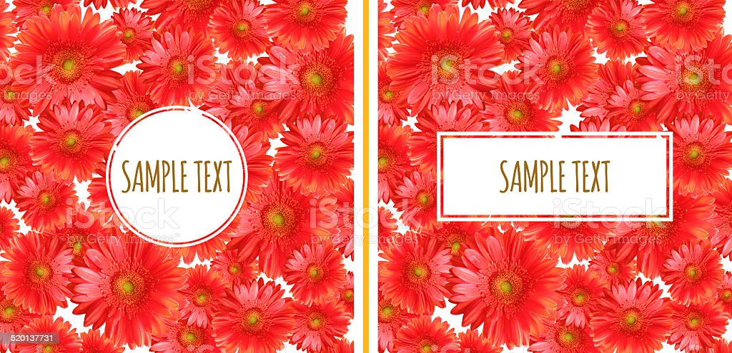 Set of Two Gerbera Backgrounds stock photo