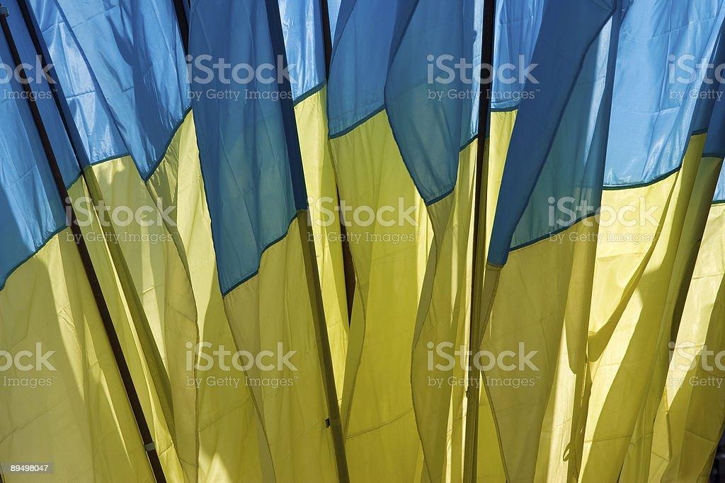 set of Ukrainian flags royalty-free stock photo
