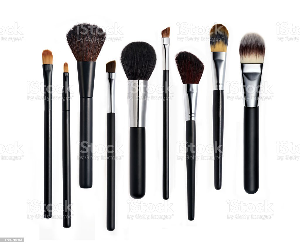 Set of various types of makeup brushes lined up in a row