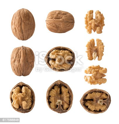 Set of walnuts with clipping path