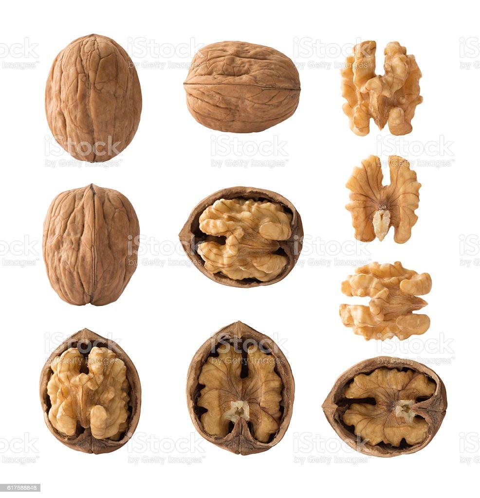 Set of walnuts stock photo