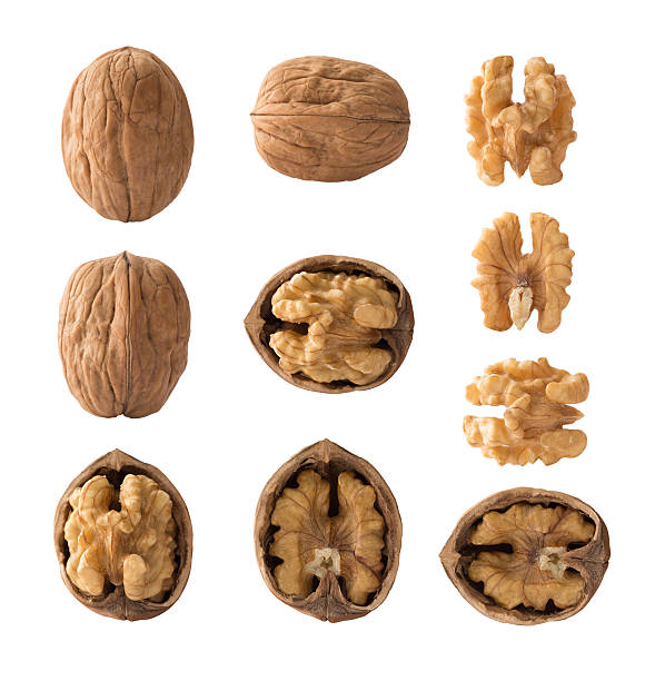 set of walnuts - walnut stock photos and pictures