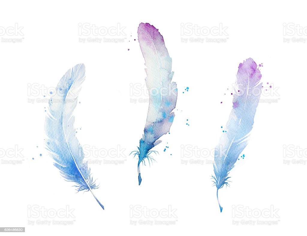 Set of watercolor feathers, hand painted stock photo