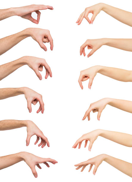 Set of white man and woman hands. Hand picking up something stock photo