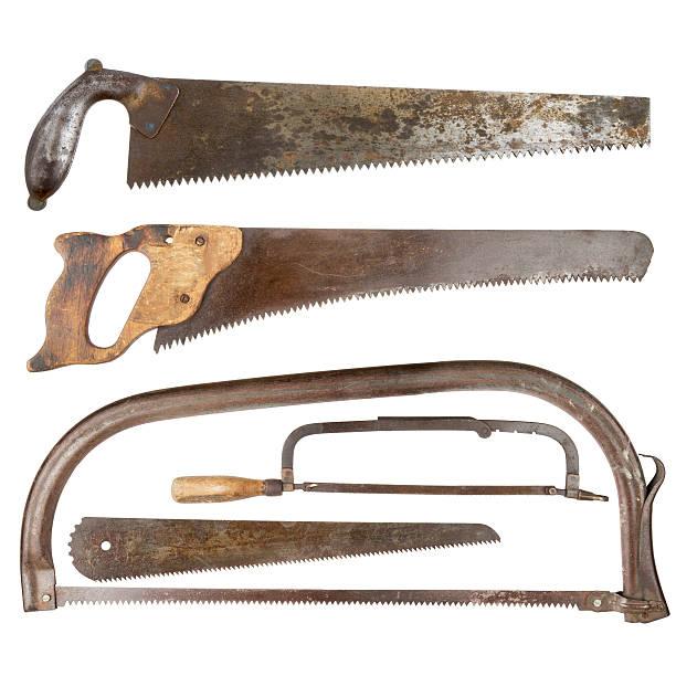 set old saws on a tree isolated on white - fuchsschwanz stock-fotos und bilder