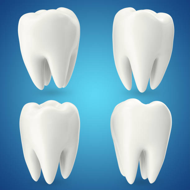 set teeth, concept dental care isolated on blue background, for your design project, 3d rendering - icon set healthy foto e immagini stock