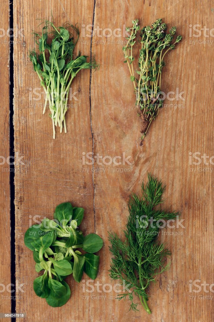 Set variety of organic herbs on wooden table, top view. Pea green sprouts, dill, thyme and mache leaves on old wooden table - Royalty-free Above Stock Photo