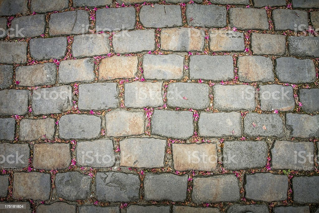 Sett cobblestone, or Belgian block, in Paris, France stock photo