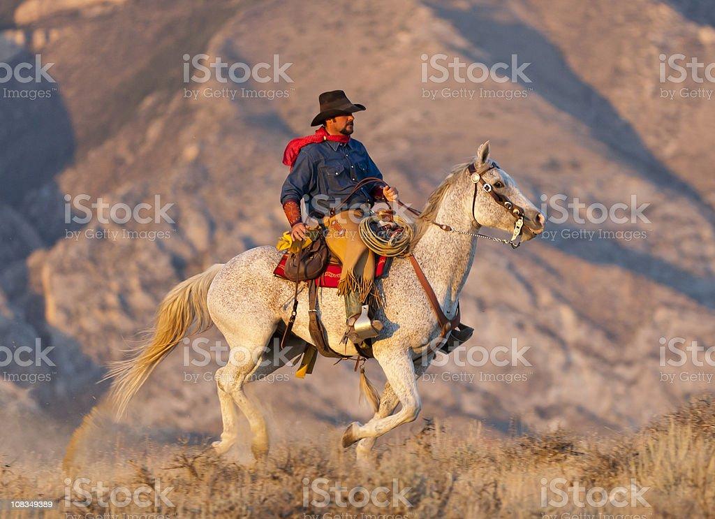 Puesta de sol ilumina galloping horse y rider - foto de stock