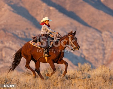Setting sun lights up galloping horse and young boy rider.Click on the following banner to see more images: