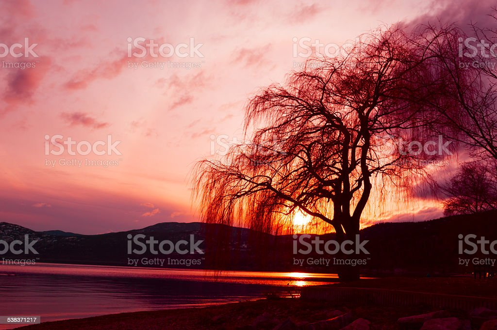 Setting Sun on Okanagan Lake stock photo
