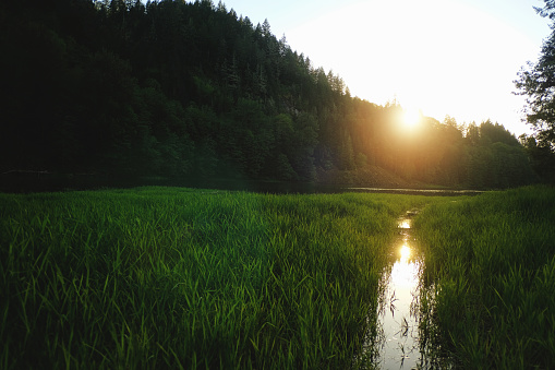 습지 호수 석양 0명에 대한 스톡 사진 및 기타 이미지