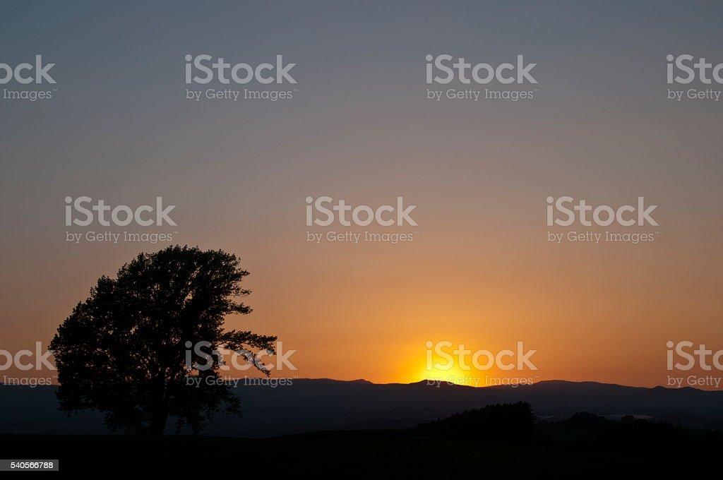 Setting sun stock photo