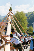 Kochel am See, Germany - May 1, 2019: In many Bavarian communities, it is customary on May 1st to set up a tall, decorated tree by native men with exclusive muscular strength. Dressed in traditional Bavarian costume, with short leather pants and white shirts. After the set up the maypole gets celebrated by brass music, beer and dance. The maypole (Maibaum) symbolizes the spring and stands for love and fertility.