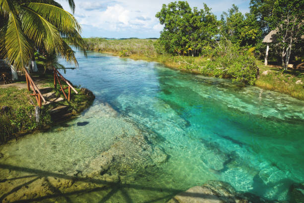 Seven colored lagoon surrounded by tropical plants in Bacalar, Quintana Roo, Mexico stock photo