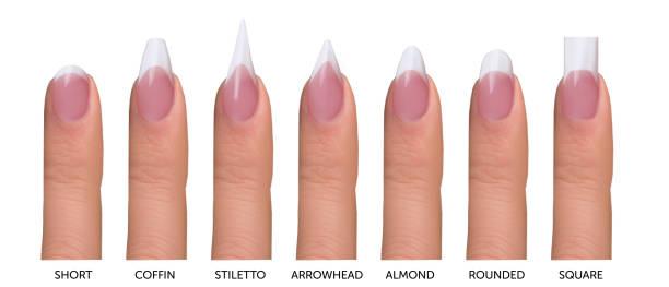 sieben am häufigsten french maniküre nagel formen - nails stiletto stock-fotos und bilder
