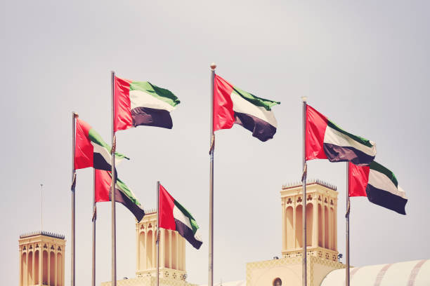seven united arab emirates flags, united arab emirates. - uae flag stok fotoğraflar ve resimler