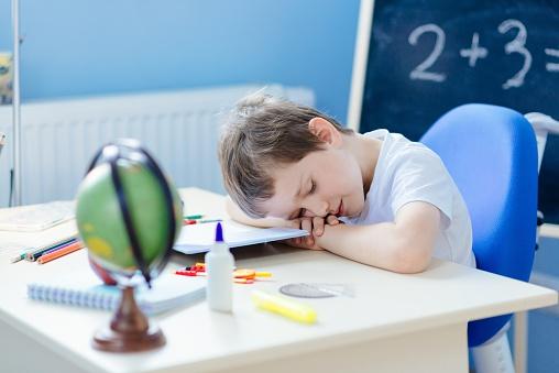 Tired 7 year old boy fell asleep while doing homework