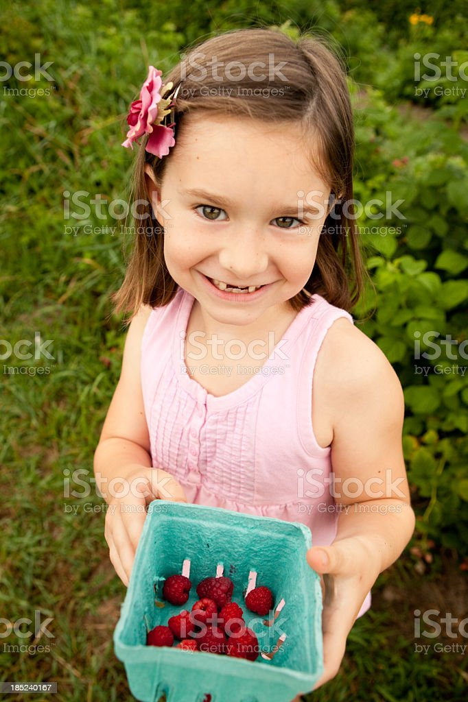 Seven Year Old Girl Showing Raspberries She Picked royalty-free stock photo